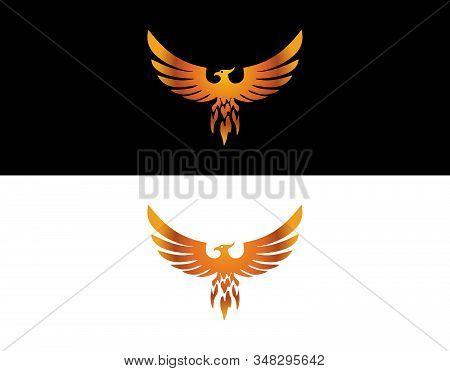 Phoenix Golden Bird A Beautiful Bird Called Golden Phoenix!