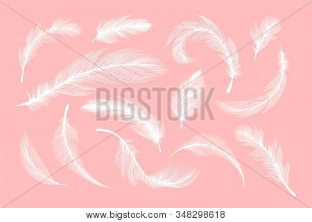 White Feathers, Vector Silhouettes With Fluffy Plumage Texture. Feather Quills Flying And Falling, A