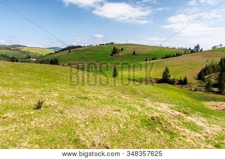 Rolling Hills Of Carpathian Countryside In Spring. Beautiful Rural Landscape Of Ukraine. Green Grass