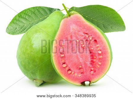 Isolated Guava. One Whole Green Guava Fruit And A Half With Pink Flesh On A Branch With Leaves Isola