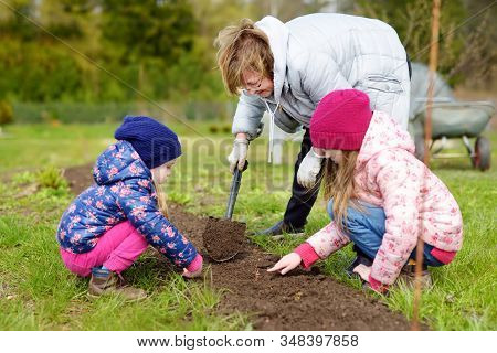 Two Cute Little Sisters Helping Their Grandmother In A Garden. Children Taking Part In Outdoor House