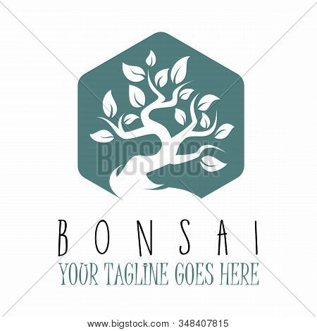 Amazing Bonsai Tree Design And Can Be Used As A Logo
