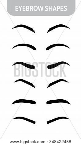 Set Eyebrow Shapes. Various Types Of Eyebrows. Trimming. Vector Illustration With Different Thicknes