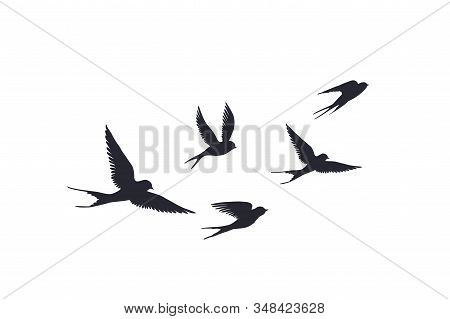 Flying Birds Silhouette On White Background. Vector Set Of Flock Of Swallows Sign. Tattoo Spring Bir