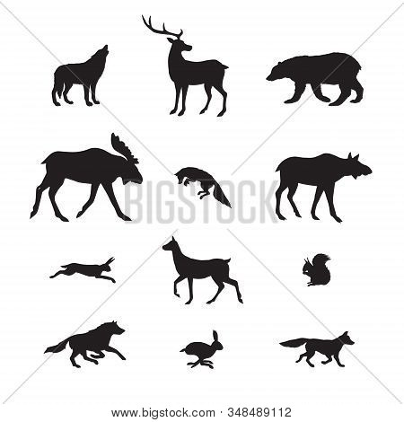 Vector Black Set Bundle Of Forest Wild Animals Silhouette Isolated On White Background