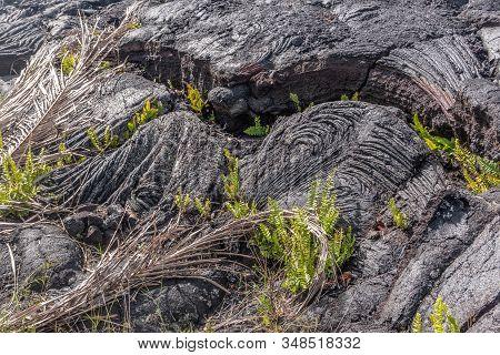 Kaimu Beach, Hawaii, Usa. - January 14, 2020: Closeup Of Waves Of Hardened Black Lava Field Off Kila