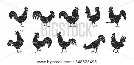 Cock Of Animal Isolated Black, Simple Set Icon.vector Illustration Set Rooster Cockerel.vector Black