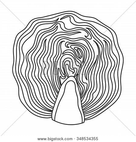 Cabbage Vector Icon.outline, Line Vector Icon Isolated On White Background Cabbage.