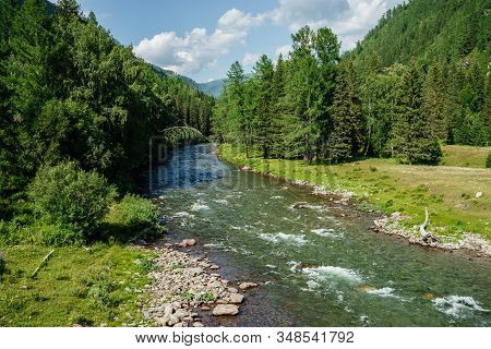 Beautiful Mountain Small River With Clear Water In Forest Among Rich Flora In Sunny Day. Wonderful L