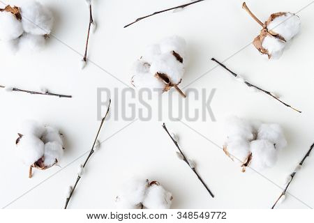 Flatlay With Cotton Flowers And Willow Catkins On A White Background