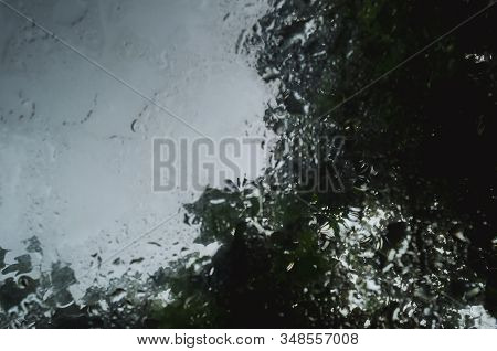 Rain Drops In A Puddle With Trees Reflection.