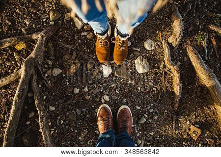 Male And Female Legs In Brown Boots In The Roots Of Trees In The Sunlight. View From Above, Flat Com