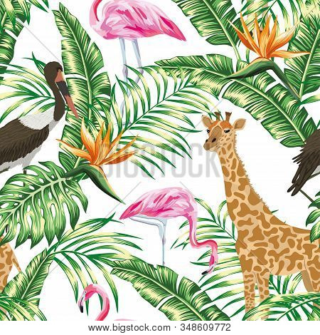 Realistic Animal Vector Giraffe, Stork And Pink Flamingo With Tropical Monstera, Palm, Banana Leaves