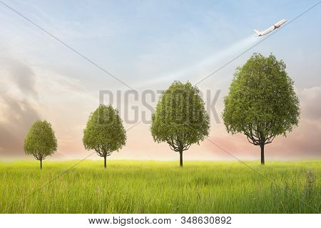 Tree Is Growing With The Plane Symbolizing The Arrow. Business Growth Concept. Financial Growth Is T