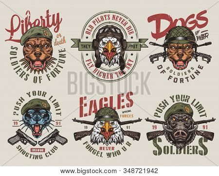 Colorful Army And Animals Vintage Labels With Guns Rifles Inscriptions Aggressive Pitbull Wild Boar