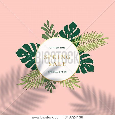 Monstera Tropical Leaves Summer Sign Or Logo Template. Abstract Green Foliage With Round Border And
