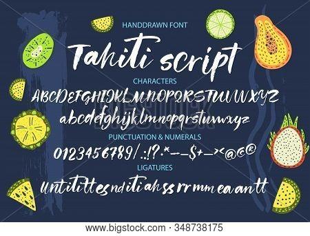Textured Calligraphy Hand Drawn Vector Alphabet. Rough Grunge Font. Latin Tropical Script Typeset Wi