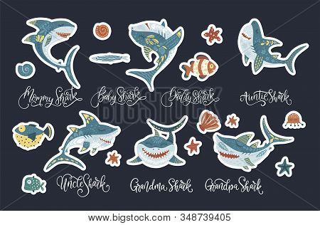 Happy Shark Flat Vector Sticker Set With Lettering Text Quotes . Underwater Fish Animal Family Cute