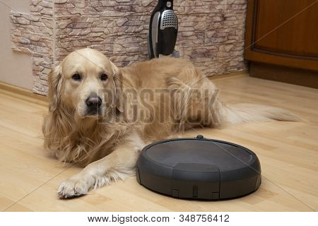 Robot Vacuum Cleaner And Dog.vacuuming The House.