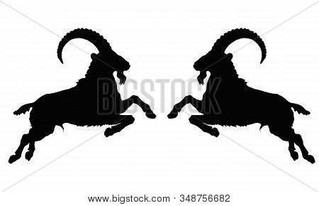 Two Leaping Capricorns, Black Silhouette On A White Background, Vector Isolated Monochrome Image