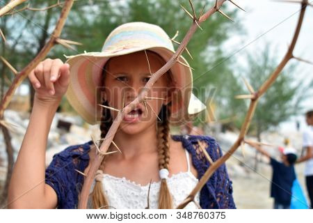 Threat Prickly Branches Of The Shrub. Impenetrable Bushes. Baby Girl Pricked Her Finger With A Sharp