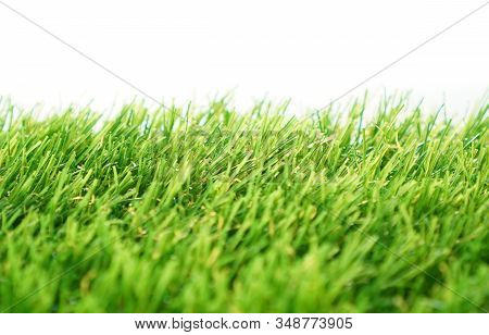 Evergreen Artificial Grass Close-up On A White Background