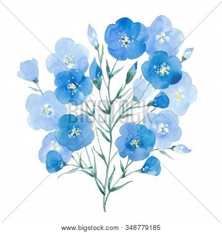 Blue Flax Flowers. Watercolor Illustration On White Background.