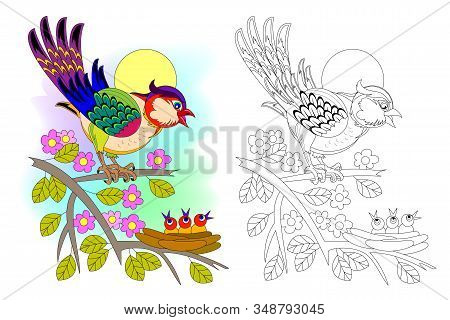 Colorful And Black And White Page For Coloring Book For Kids. Illustration Of A Bird And Little Babi