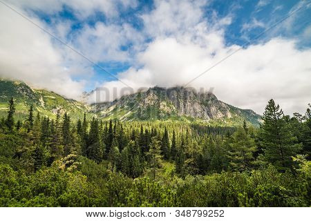 Mountain Landscape With Lush Vegetation And Cloudy Sky During The Day. Mengusovska Valley, High Tatr