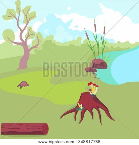 Natural Cute Landscape With Forest Glade, Blue River, Reeds, Stones, Stump Overgrown With Mushrooms