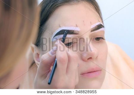 Beautician Is Tinting Woman Eyebrows Applying Brown Paint Natural Henna Using Brush In Beauty Clinic