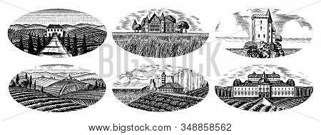 Vineyards Set. Vine Plantation For Bottle Labels. Scenic View Of French Or Italian Engraved Landscap