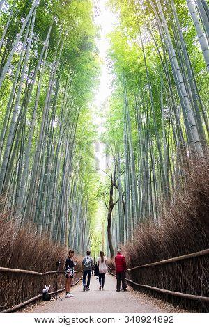 Arashiyama Bamboo Grove Or Sagano Bamboo Forest, Is A Natural Forest Of Bamboo In Arashiyama, Landma