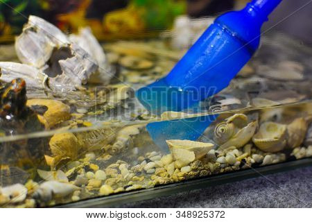 Cleaning The Aquarium. Pumping Water Out Of The Aquarium. Close-up. Siphon Gravel Cleaner Tool In Th