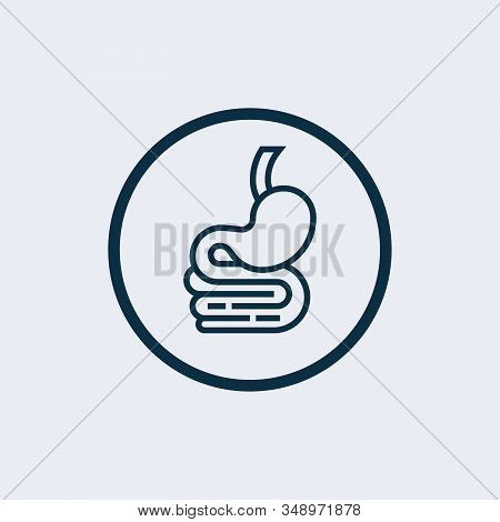 Stomach Icon Isolated On White Background From Medical Collection. Stomach Icon Trendy And Modern St