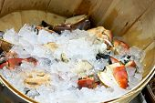 Wooden bucket with lot of frozen crabs poster
