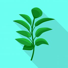 Vector Design Of Leaf And Coffee Logo. Collection Of Leaf And Plant Stock Symbol For Web.