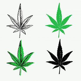 Cannabis Leaves Set: Outline, Green And Black Silhouette. Cbd Cannabidiol Marijuana Icon, Medical He