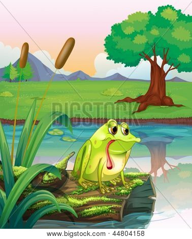 Illustration of a lonely frog above the wood with algae