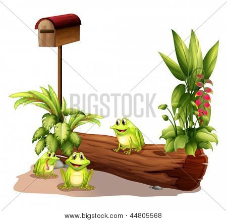Illustration of the three frogs near the wooden mailbox on a white background