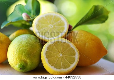 Ripe Lemons On Table