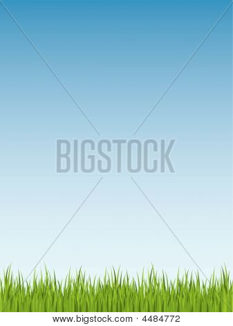 Spring Grass Illustration (seamless)