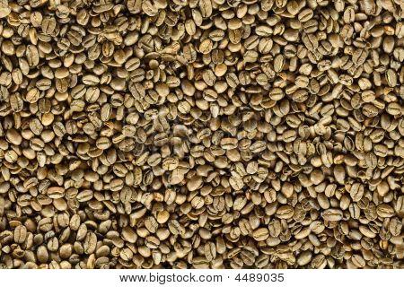 Coffee Beens (seamless Texture)