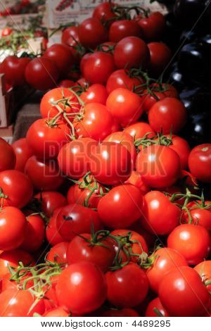 Fresh Bright Red Tomatoes