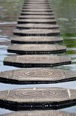 Steps in Water at Tirtagangga Water Palace in Bali Indonesia poster