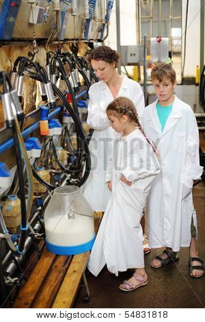 Family of three in white robes look at new milk and machines for milking of cows in big farm.