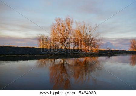 Reflections Of Burning