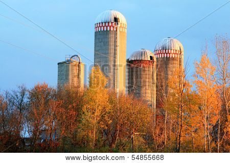 Four Grain Silos
