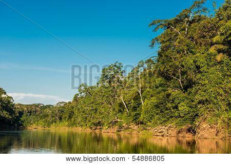 heath river in the peruvian Amazon jungle at Madre de Dios poster
