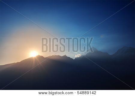 beauty purple sunrice on mountain